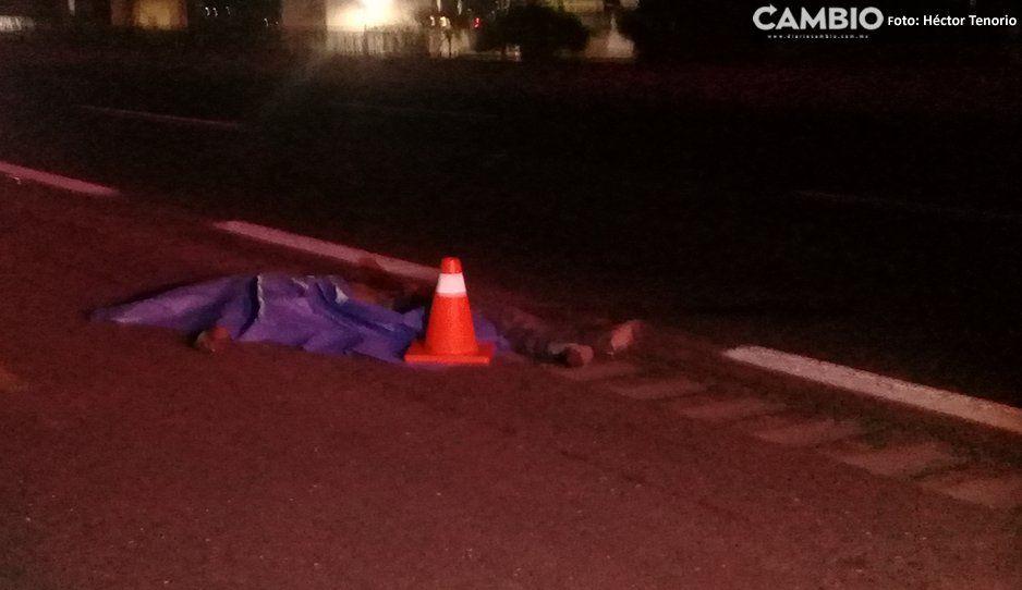 Hombre pierde la vida al ser atropellado sobre la Autopista México-Puebla