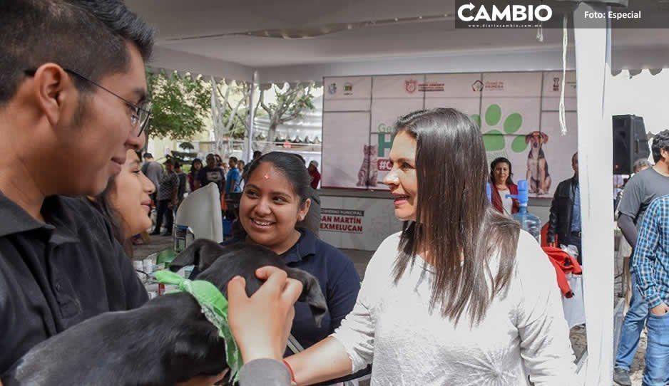 Norma Layón cumple compromiso por el Bienestar Animal en Texmelucan