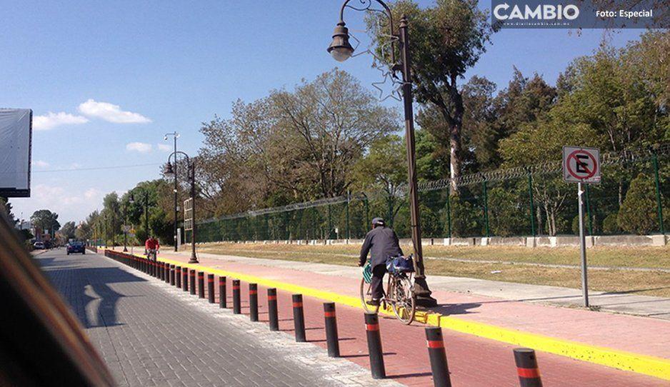 Empleados de Karina Pérez tumban poste de ciclovía