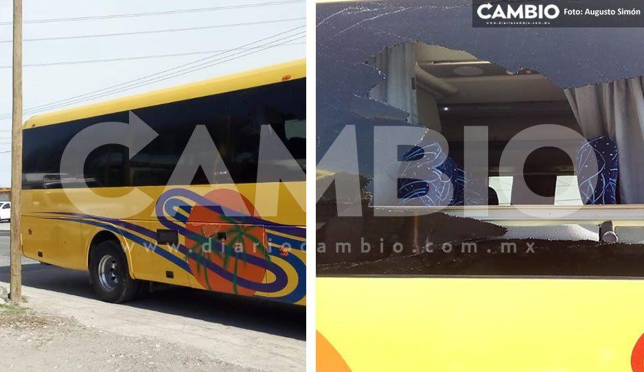 Chofer se viste de héroe: arrolla a sujetos que apedrearon su autobús para asaltarlo en el libramiento Acatzingo