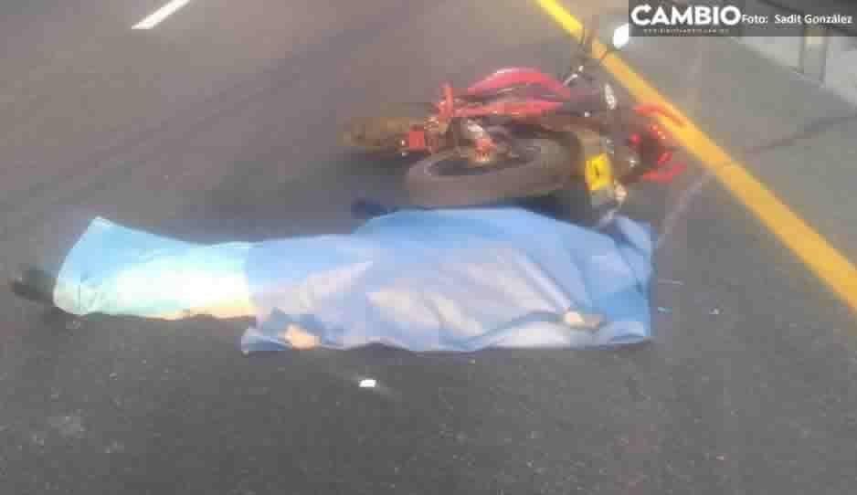 Motociclista se queda dormido y muere en impactante choque en la Puebla- Orizaba