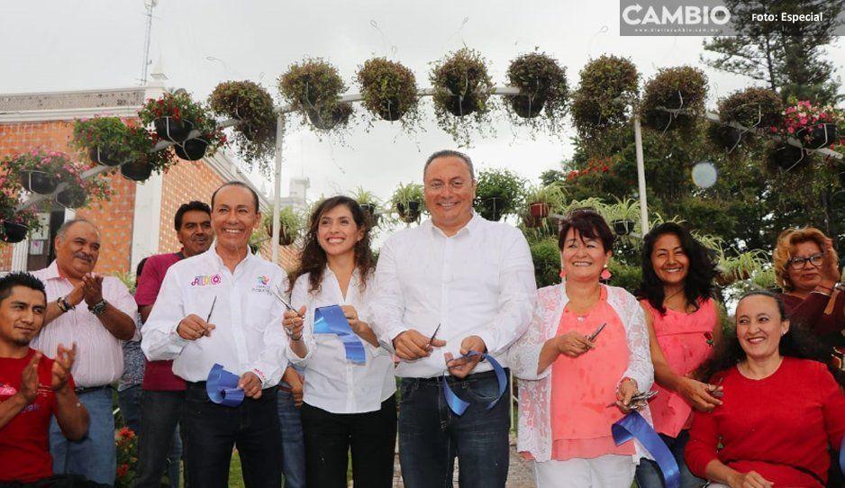 Inaugura Memo Velázquez primer Tapete  Monumental incluyente: Fantasía Mexicana