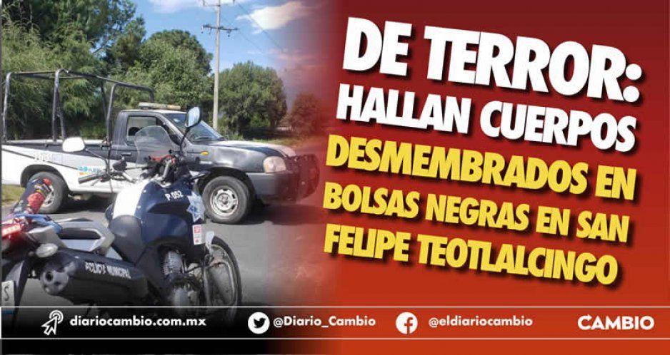 Hallan cuerpos desmembrados en bolsas negras en Teotlalcingo