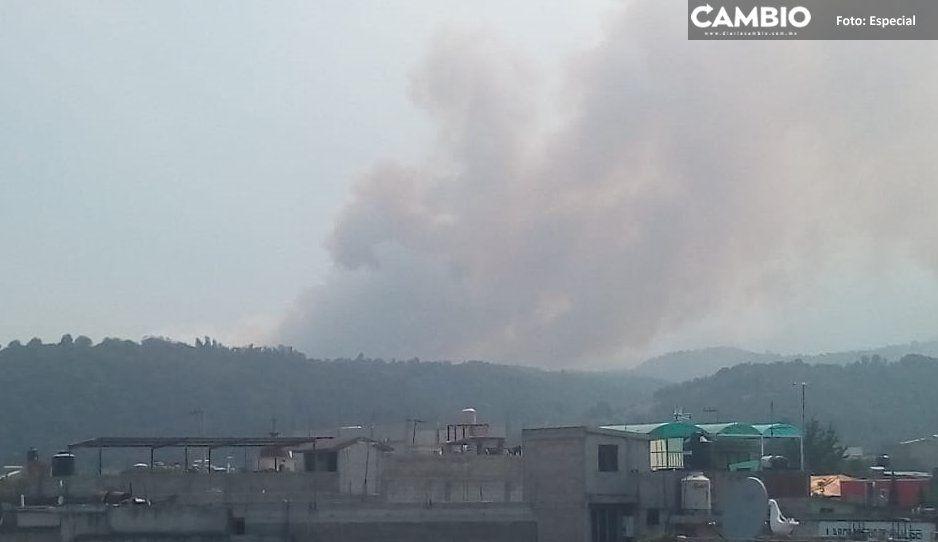 Sin registro de nuevos incendios  forestales: Protección Civil estatal
