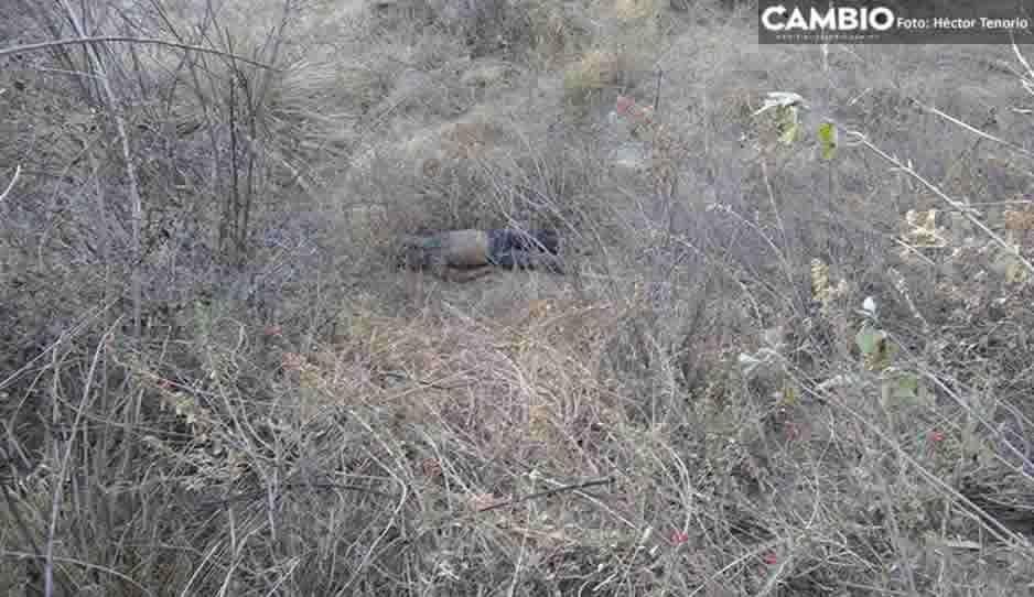 Hallan dos cuerpos en estado de descomposición en Texmelucan