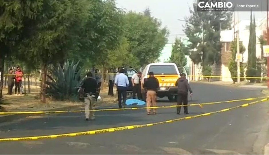 Motociclista alcoholizado muere tras chocar con un árbol en Cholula