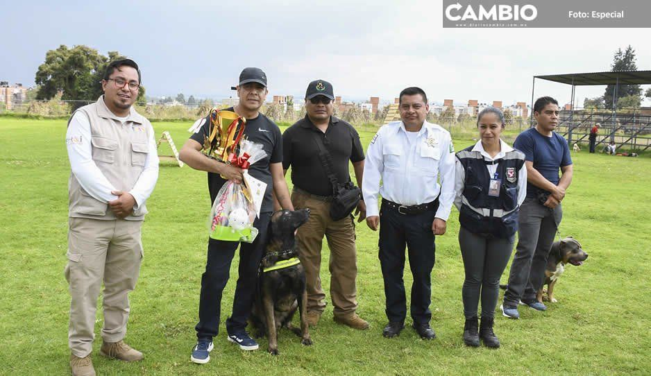 Cuautlancingo organiza exhibición de perros de búsqueda y protección