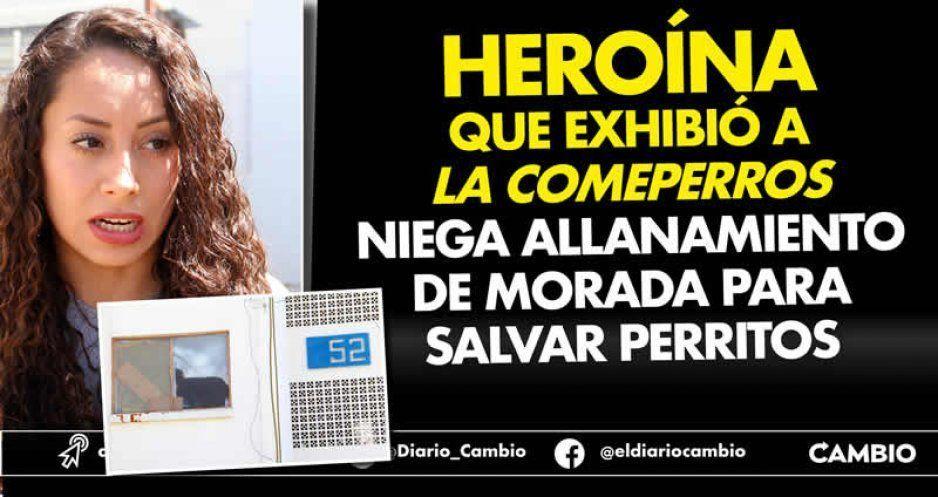 Heroína que exhibió a La Comeperros niega allanamiento de morada para salvar perritos