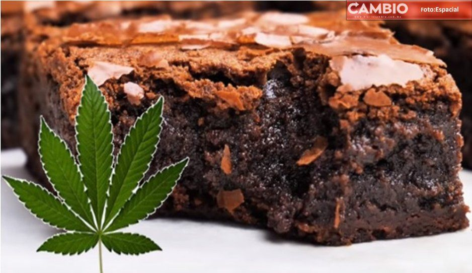 En salones del CENHCH venden brownies de mariguana, denuncian padres de familia