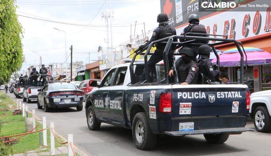 Impresionante operativo en el Mercado Morelos para decomisar palomas, cuetes y brujitas