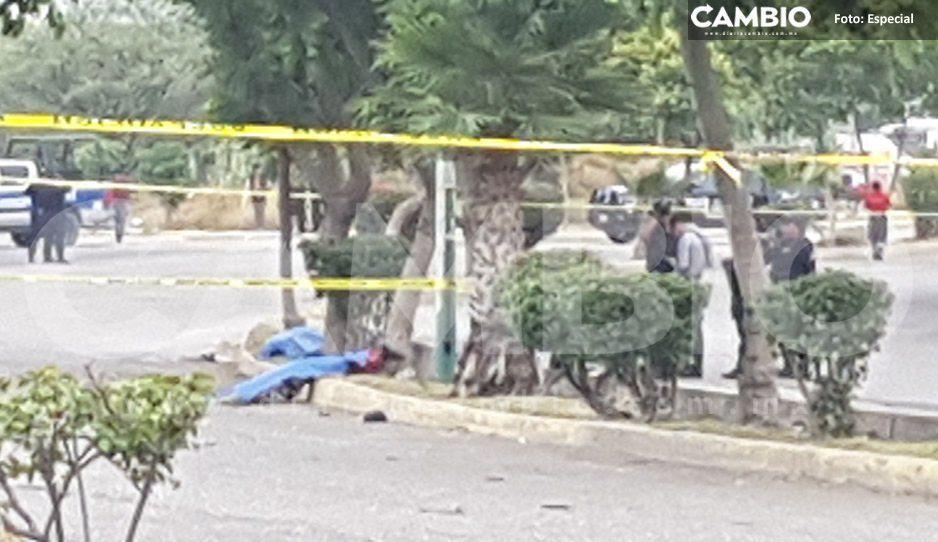 Ya lo llaman héroe: Conductor atropella y mata a dos sujetos armados que se robaron una moto en Tehuacán (VIDEO)