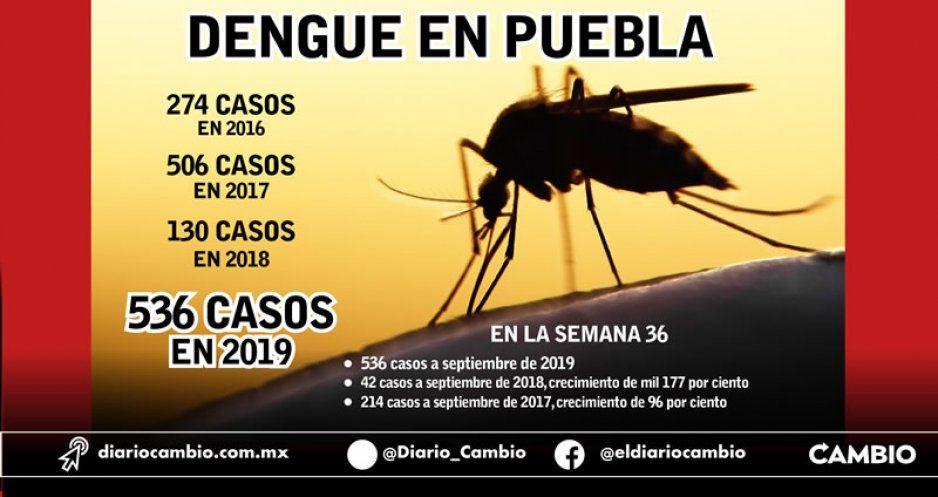Dengue carcome a Puebla: en 8 meses de 2019 ya se superan los casos de 3 años