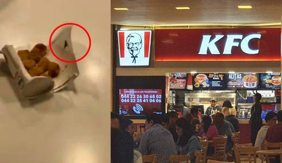 ¡Perrísimo asco! KFC Angelópolis ofrece pollito con cucarachas (VIDEO)
