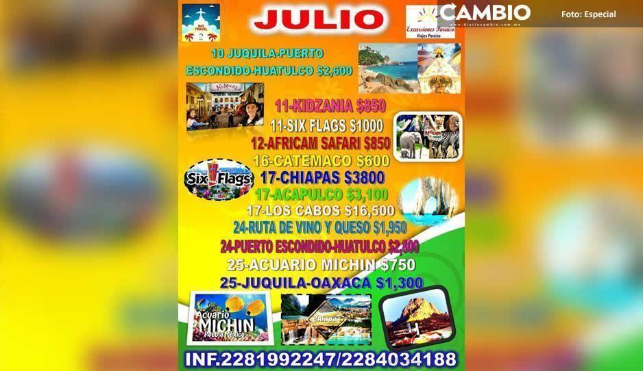 ¡Increíble, pero cierto! Agencia de viajes jarocha ya vende tours para Africam Safari y Acuario Michin
