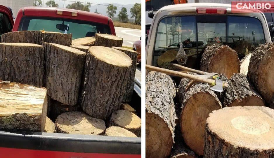 Con madera clandestina caen dos talamontes en Nopalucan