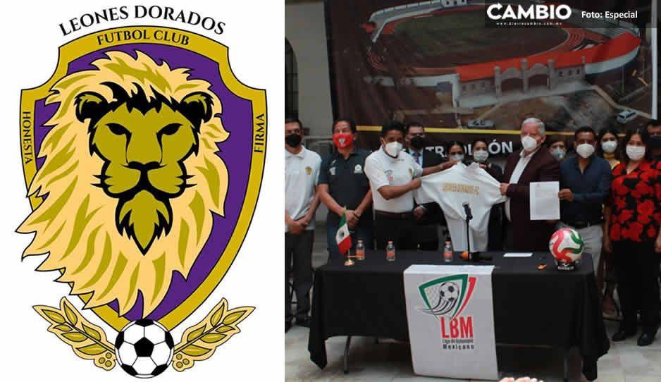 Teziutecos tendrán equipo de primera división ¡Leones Dorados a la LBM!