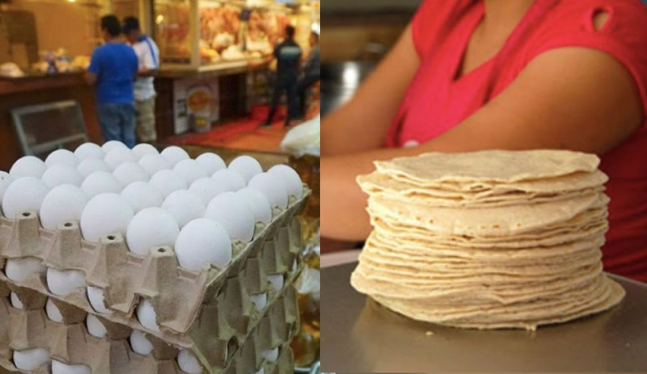 Por subir precio de la tortilla y el huevo, Profeco multaría hasta por 3 millones a Bachoco y Maseca