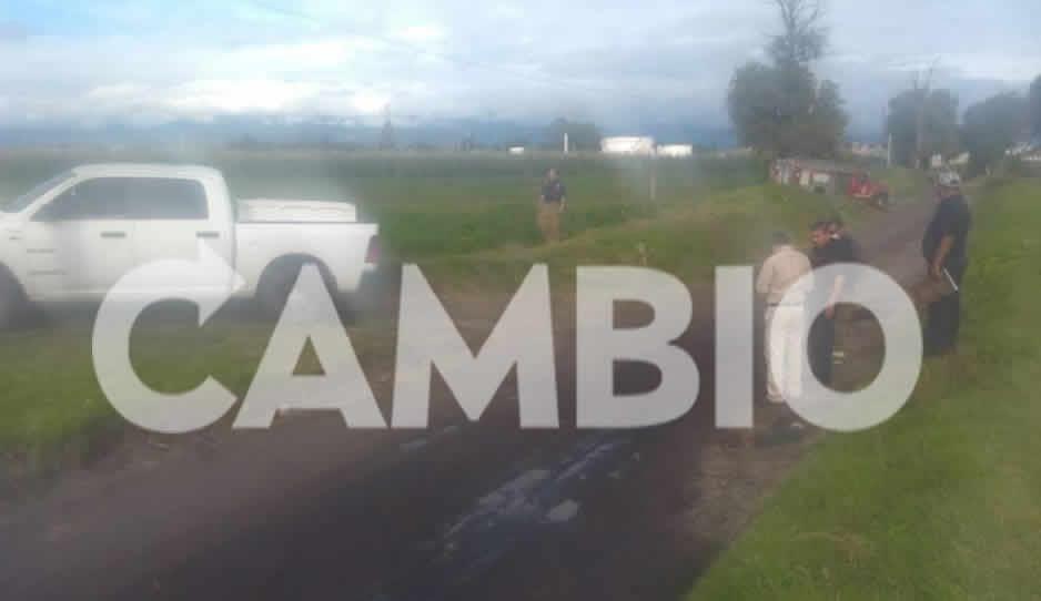 Localizan huachitoma en comunidad de Texmelucan