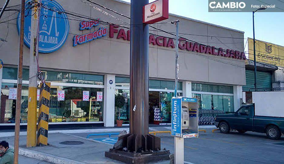 Malditas ratas atracan Farmacia Guadalajara en la entrada de Texmelucan