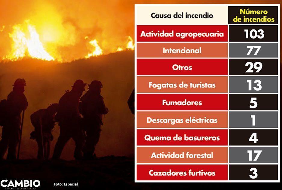Uno de cada tres incendios  son intencionales en Puebla