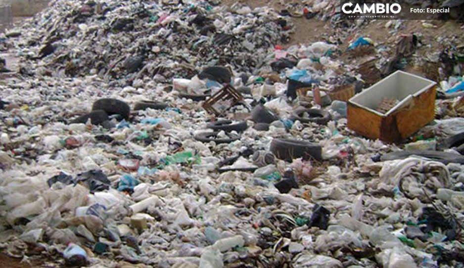 Encuentran 16 tiraderos clandestinos de desechos de animales e industrias en Tehuacán