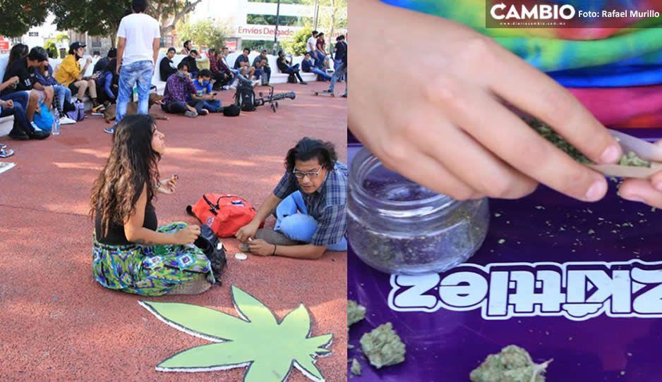 Marihuanos toman el Paseo Bravo y exigen la apertura de un jardín cannábico