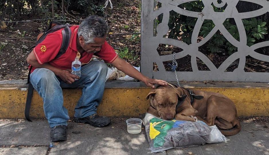 Ex empleado de Elektra se queda en la calle con su perrito tras ser despedido ¡Ayuda!