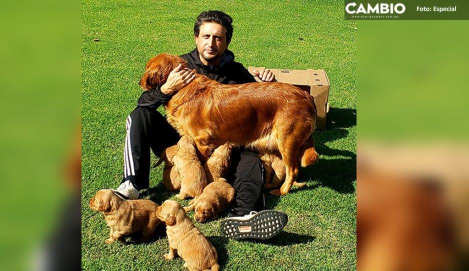 JJ reaparece otra vez con sus perritos tras investigación por desvió de recursos