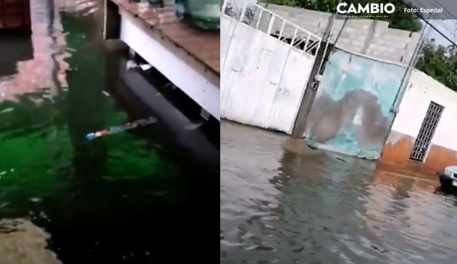 No es Venecia, es el mercado de Atlixco inundado por las fuertes lluvias (VIDEO)