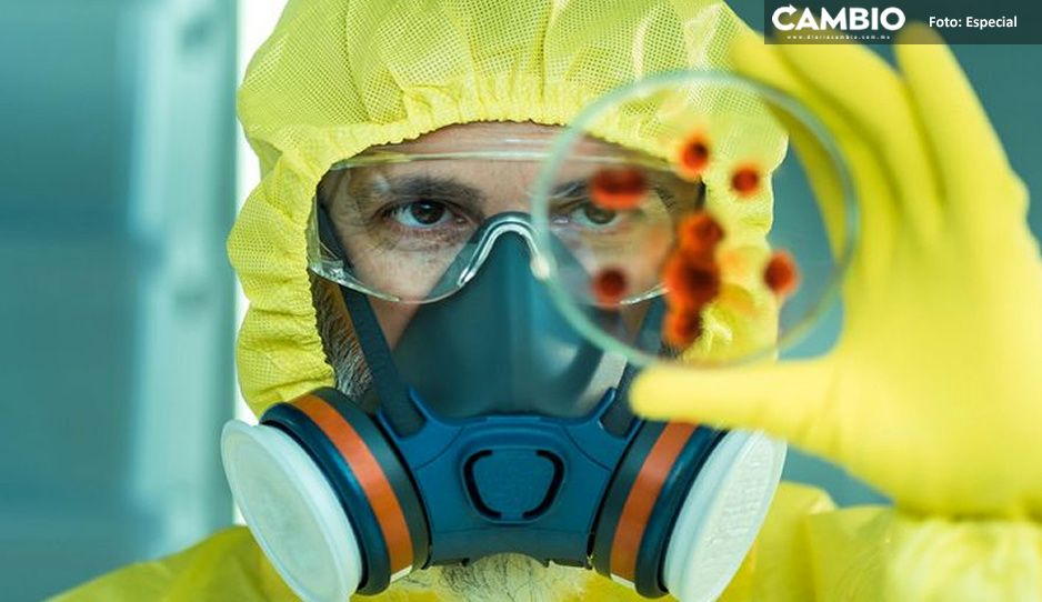 ¿Qué más quieres de nosotros 2020? nuevo virus similar al Ébola causa alarma en Bolivia