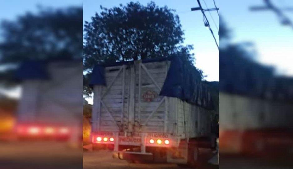 Hallan camión abandonado en Texmelucan: tiene rótulos de material peligroso