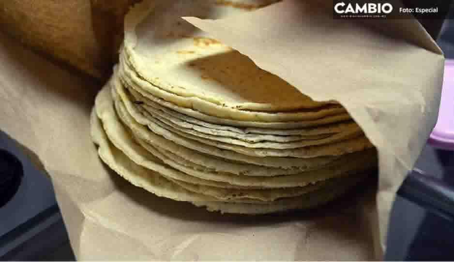 ¡No te dejes engañar! Descartan subir precio a la tortilla en Puebla