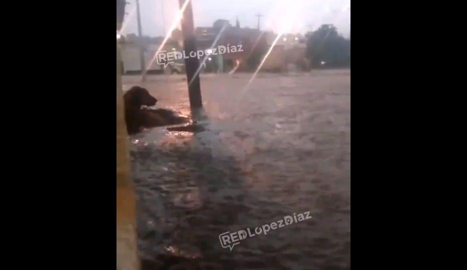 Calles de Lomas de San Miguel se convierten en ríos ante inundaciones (VIDEO)