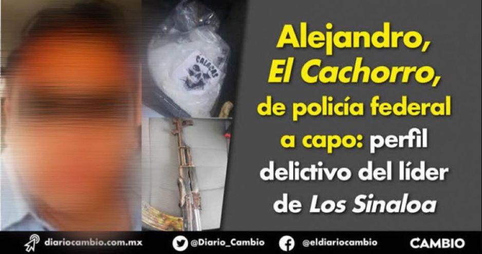 Alejandro, El Cachorro, de policía federal a capo: perfil delictivo del líder de Los Sinaloa