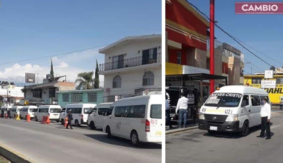 ¡Ya les cayó el chahuiztle! SMTA realiza operativo de sanidad en Atlixco