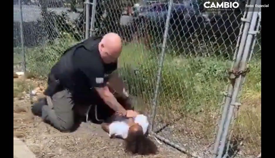 En pleno Siglo XXI; un maldito policía gringo racista golpea brutalmente a niño afroamericano (VIDEO)