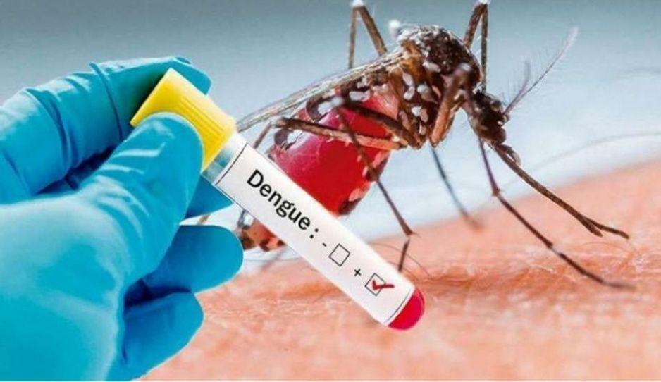Alarma dengue en Puebla: suman 726 casos