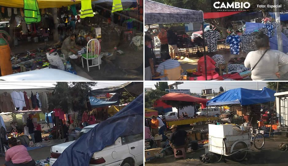 No les importa la contingencia; comerciantes de Antorcha Campesina instalaron su tianguis en Bosques de Manzanilla (VIDEO)
