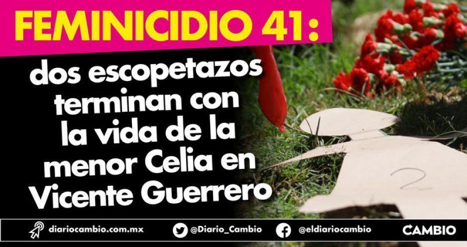Feminicidio 41: dos escopetazos terminan con la vida de niña de 10 años en Vicente Guerrero