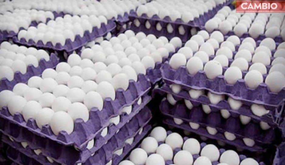 Venden hasta en 80 pesos el cono de huevo en Tehuacán