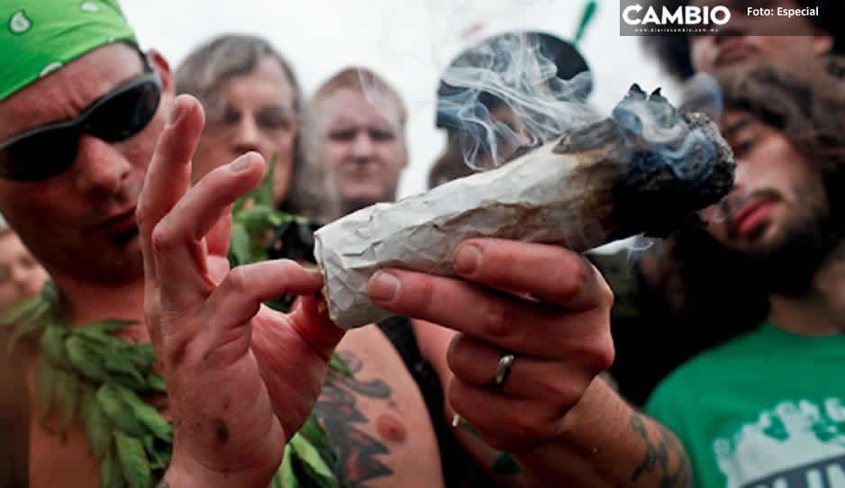 Ya es oficial: Senado aprueba uso lúdico de la mariguana