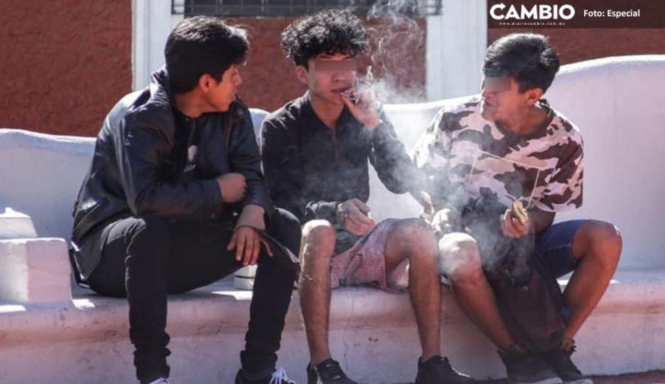 ¿Legalización de la marihuana alentará a los niños a drogarse?