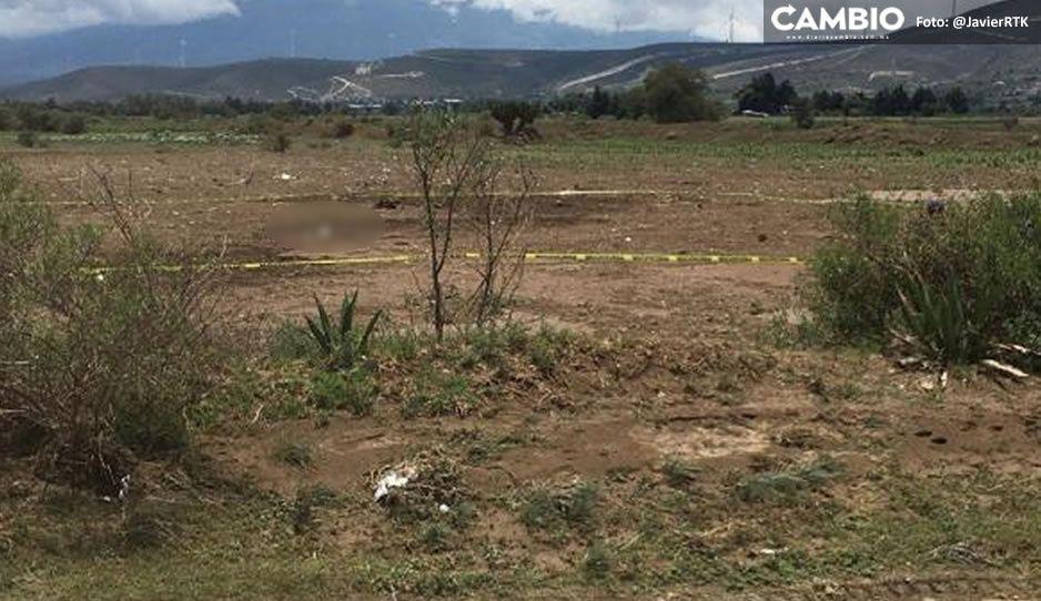 Encuentran cuerpo embolsado en terreno de cultivo de Cañada Morelos