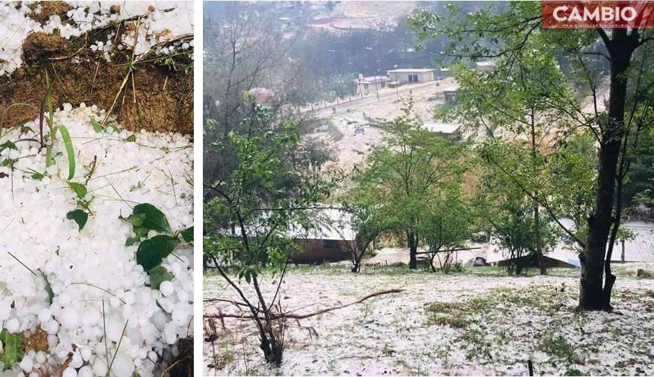 ¡Lo que faltaba! Lluvia y granizo destrozan viviendas y cultivos en la Sierra Negra