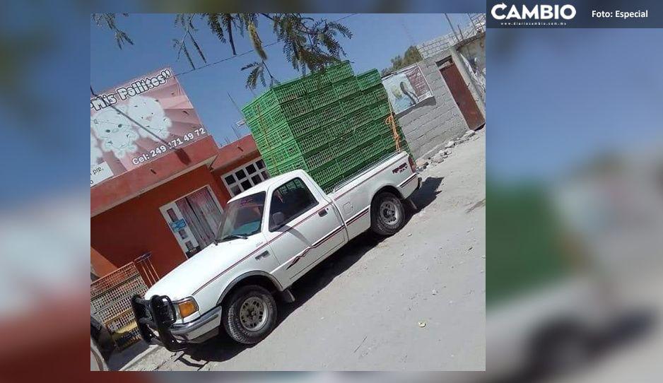 Violento robo de camioneta que transportaba pollos vivos en Tecamachalco