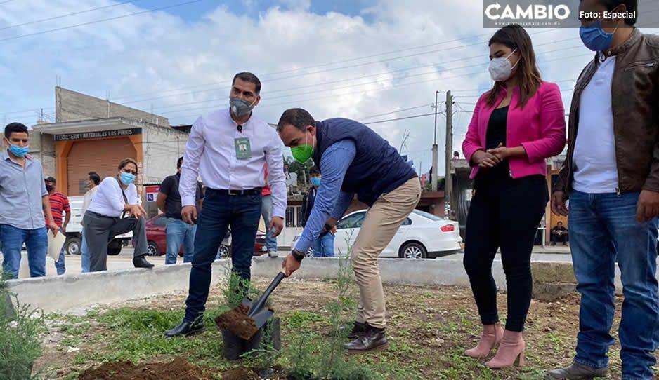 Minera Autlán dona 4 mil árboles para programa de reforestación en Teziutlán