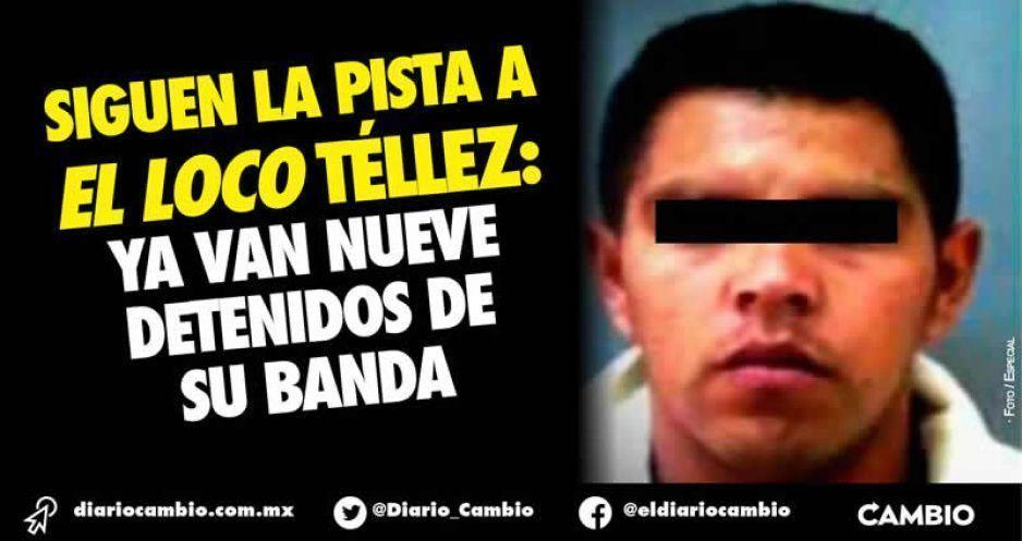 Siguen la pista a El Loco Téllez:  ya van nueve detenidos de su banda