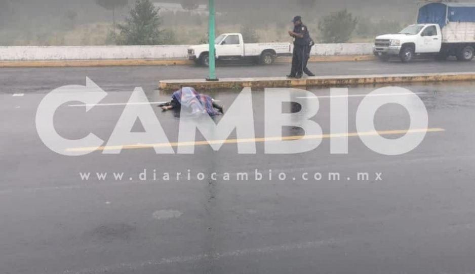 Muere atropellado en la autopista San Antonio Virreyes- Teziutlán