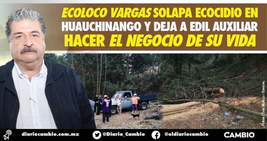 Ecoloco Vargas solapa ecocidio en Huauchinango y deja a edil auxiliar hacer el negocio de su vida