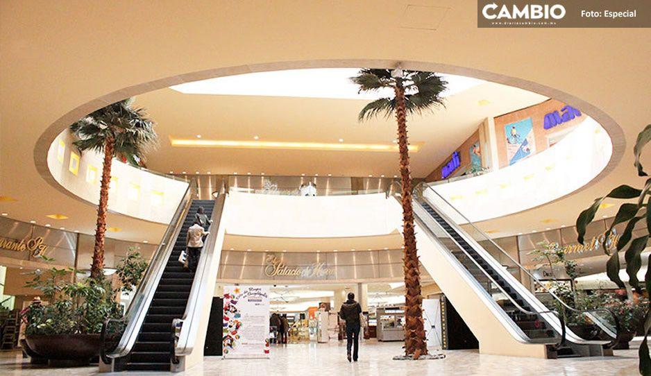 Plazas comerciales y todos los negocios ya pueden abrir los domingos